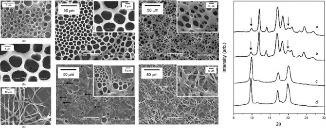 Morphology and crystal structure on electrospun fibrous poly(1-butene)(PB) membrane