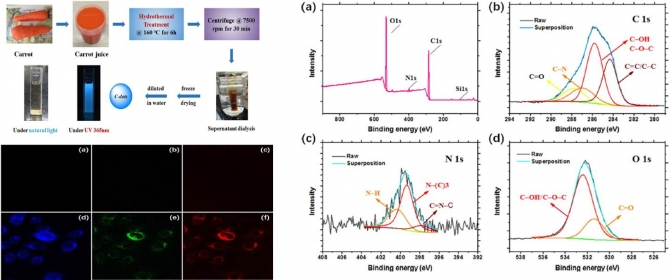 Green synthesis of fluorescent carbon dots from carrot juicefor in vitro cellular imaging