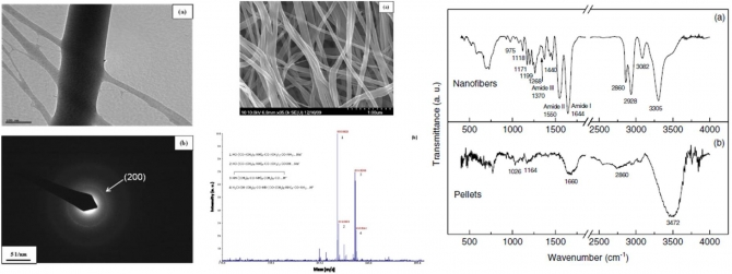 Preparation and characterization of electrospun ultrafine polymide-6 nanofibers