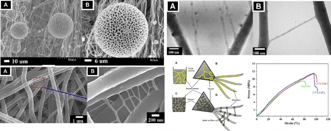 Spider-net within N6  PVA and PU electrospun nanofiber mats using salt addition: Novel strategy in the electrospinning process