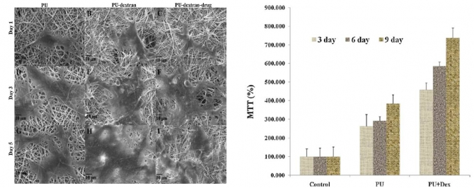 Wound-dressing materials with antibacterial activity from electrospun polyurethane–dextran nanofiber mats containing ciprofloxacin HCl