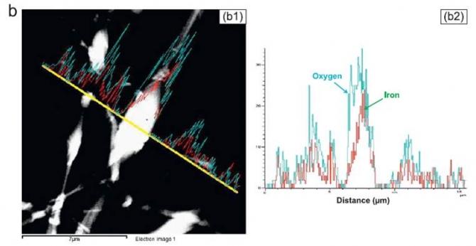 Electrical characterization of nylon-6 composite nanofibers
