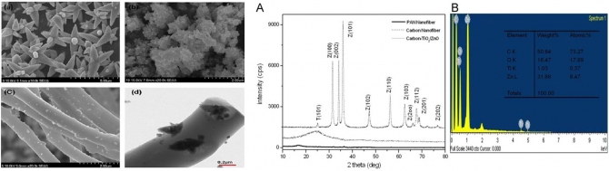 Carbon nanofibers decorated with binary semiconductor (TiO2/ZnO) nanocomposites for the effective removal of organic pollutants and the enhancement of antibacterial activities