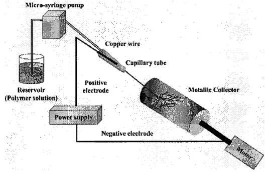 Electrospun non-woven fabrics of poly(epsilon-caprolactone) and their biodegradation by pure cultures of soil filamentous fungi