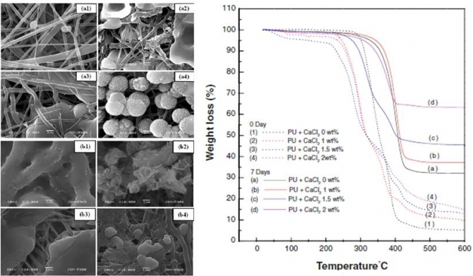 Hydroxyapatite Mineralization on the Calcium Chloride Blended Polyurethane Nanofiber via Biomimetic Method