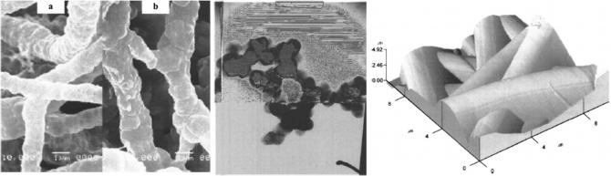 GeO2 fibers: Preparation, morphology and photoluminescence property