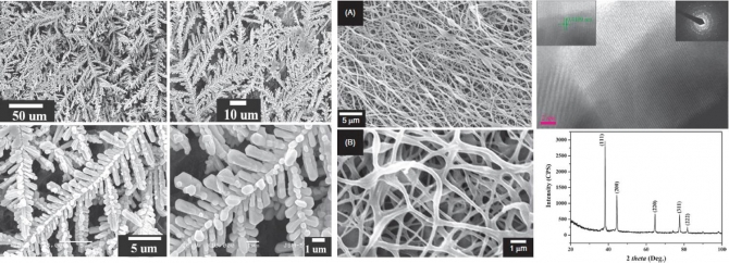 A New Class of Hierarchical Silver Nanostructures Enabled by Electrospinning and Novel Hydrothermal Treatment