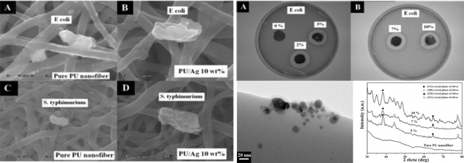 Electrospun Antimicrobial Polyurethane Nanofibers Containing Silver Nanoparticles for Biotechnological Applications