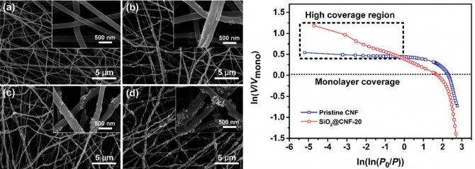 Hierarchical porous carbon nanofibrous membranes with an enhanced shape memory property for effective adsorption of proteins