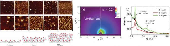 Hierarchically Assembled Nanofibers Created by a Layer-by-Layer Self-Assembly