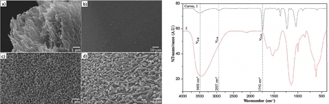Facile fabrication of hierarchical cellulose nanospicules via hydrolytic hydrogenation