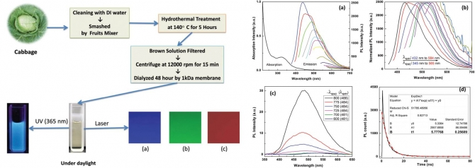 Synthesis of carbon quantum dots from cabbage with down- and up-conversion photoluminescence properties: excellent imaging agent for biomedical applications