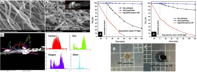 Ag-ZnO photocatalyst anchored on carbon nanofibers: Synthesis, characterization, and photocatalytic activities
