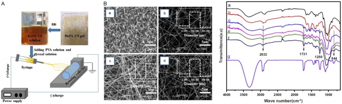 Preparation and characterization of chitosan-based nanofibers by ecofriendly electrospinning