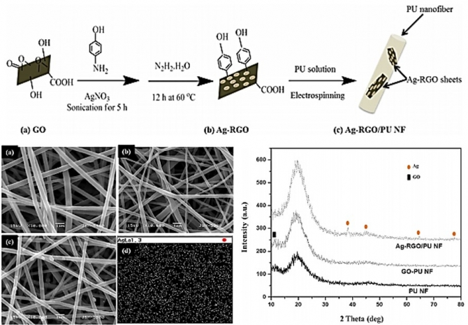Synthesis, characterization, and antibacterial performance of Ag-modified graphene oxide reinforced electrospun polyurethane nanofibers
