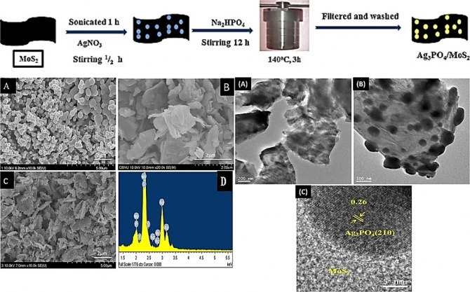 One-pot synthesis of Ag3PO4/MoS2 nanocomposite with highly efficient photocatalytic activity