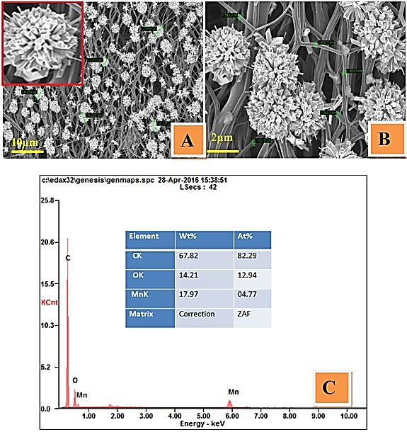 Capacitance of MnO2 Micro-Flowers Decorated CNFs in Alkaline Electrolyte and Its Bi-Functional Electrocatalytic Activity toward Hydrazine Oxidation